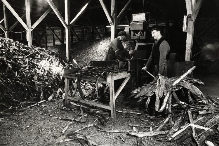Dansk Garveekstrat Fabrik, Gl. Holmegårdsvej 3